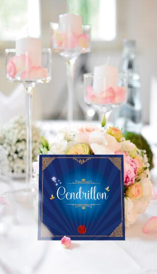 Mariage princesse - Cendrillon - nom de table - il était une fois- style romantique vintage et rétro original
