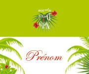 Marque-place de mariage - thème îles plage et fleurs exotiques